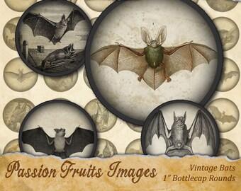 """Antique Bat Images Halloween Digital Collage Sheet-  1""""  Bottlecaps--Instant Download"""