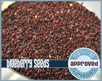 Blueberry Seeds  - 4 oz
