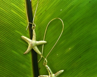 Blow Out Sale-  Gold Starfish Earring Sale