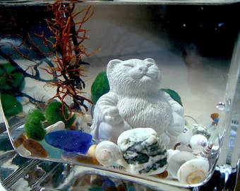 Live Marimo Balls and Mini Cat Buddha Mini Aquarium / Terrarium