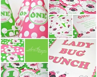 Lady Bug Party Package