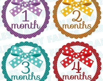 Baby month Stickers Baby Month Stickers Baby Girl Month Stickers Monthly Photo Stickers Monthly Milestone Stickers Bodysuit Stickers