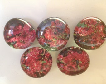 Hot Pink Flower Magnets (Set of 5)