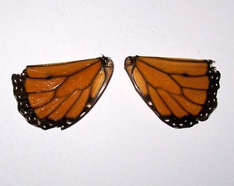 Butterfly Wings, Set 1, Tattered Wings, Monarch Butterfly, DIY, Orange, Black, Jewelry Making, Crafting, Doll Making, Fairy Wings, Gift Idea