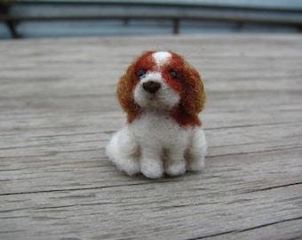 Miniature spaniel