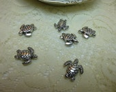 Hold for KayHamelin/100- Tibetan Silver Nice Turtle Beads 17 X 20mm