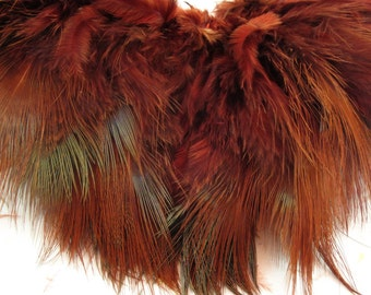ring neck pheasant rump feathers brown RPRD-36 craft feathers,Fascinators ,fly tying,crafts