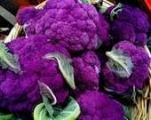 Merlin's Magic Cauliflower