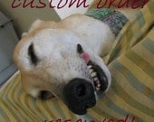 Custom order for Jane - silly old greyhound Holidays cards 8 large cards with envelopes