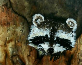 Raccoon Watercolor Art Painting Wildlife Painting Print