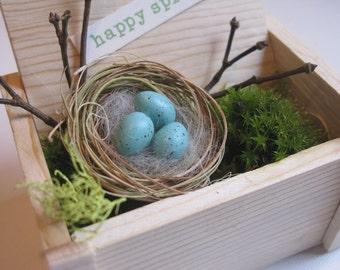 Mother's Day, Easter, spring decor, bird nest, robin eggs