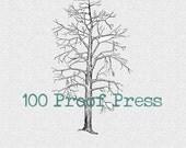Bare Winter Tree Rubber Stamp 6347