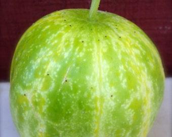 Cucumber Richmond Green Apple Very Rare Heirloom Seeds Excellent Flavor