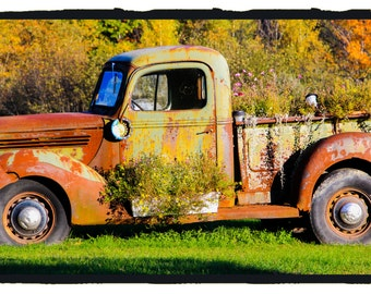 Antique Rusted Truck FLOWERED in Bradley Maine 5 X 7 color photograph fine art print