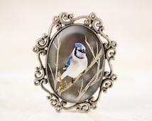 Blue Jay Brooch - Bronze Bird Jewelry Pin , Songbird Broach