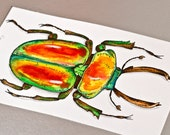 Rainbow Stag Beetle - Original Watercolor and ink painting