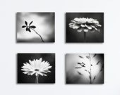 Black and White Canvas Photography Set - nature grey gray dark flowers botanical canvas gallery wrap modern photo wrapped canvas photograph