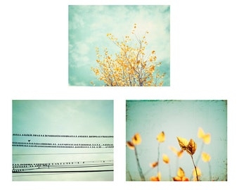 Mint Print Set - Three 11x14, 8x10 Photographs, mint green yellow turquoise 3 teal blue photo set three wall art print nature photography