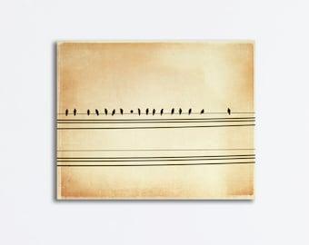 "Bird on Wire Canvas - beige wall art light brown photography neutral modern art print nursery, 16x20, 11x14 Photograph, ""Song of the Sky"""