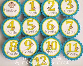Monkey Photo Tag Banner Birthday Decoration Blue Yellow First Year Birthday