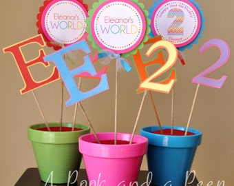 Color My World Birthday or Shower Personalized Table Top Centerpiece Party Decoration Rainbow Colors