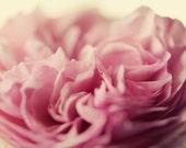 Cottage chic decor, pink flower art, floral nursery art, pastel pink, girls decor, romantic art, shabby flower decor, garden rose art