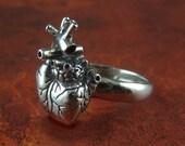 Anatomical Heart Ring - White Bronze Anatomical Heart Ring