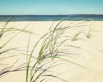 Beach grass print, beach grass canvas, summer beach photo, Lake Michigan print, Petoskey print