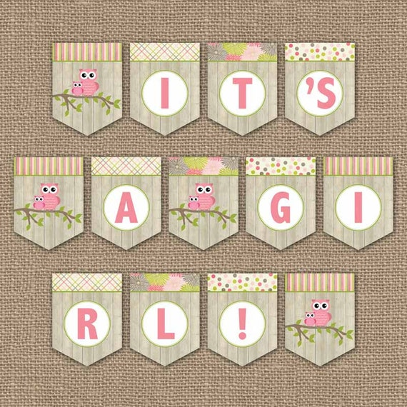 Owl baby shower banner it 39 s a girl digital pdf file Baby shower banners