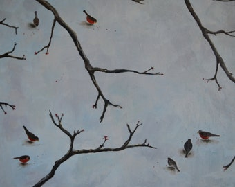 Robins In Winter