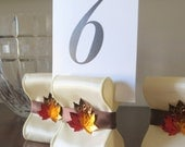 Table Number Holders - Fall Wedding Decor - Ten (10) with Ivory and Brown Satin Ribbon with Fall Leaves - Customize Your Colors