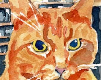 Ginger Tom Cat watercolor portrait