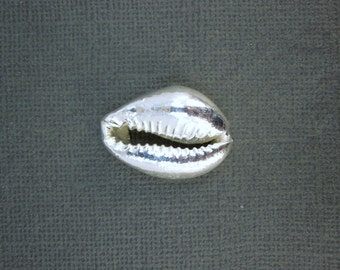 Silver Dipped Cowrie Shell-- Electroplated Silver Dipped Cowrie Shell Charm
