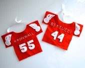 Custom pet jersey — Example chinchilla Red Wings hockey jerseys, hedgehog 49ers jersey, rabbit Dallas Cowboys