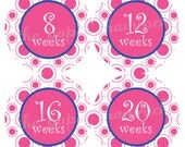 Customize your colors - Baby Bump Stickers, Pregnancy Stickers, Week Stickers