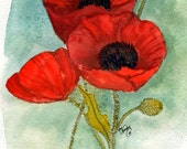 Three Red Poppies, Giclee print