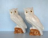Hand painted Ceramic Pair of Owls