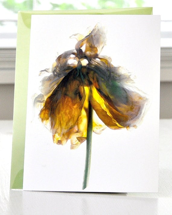 Floral Note Card-- Peony White free Shipping in the US