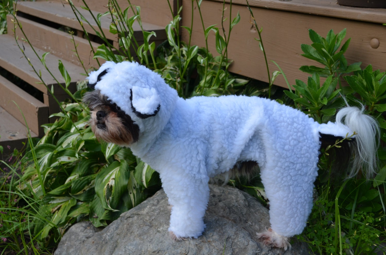 Pets Sheep Sheep Halloween Pet/dog