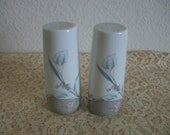 Vintage Salt and Pepper Shakers with Delicate Floral Pattern