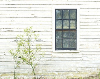 California Photography - Point Reyes Photo - Travel Photography - Architecure - Fine Art Photography Print - White Green Home Decor