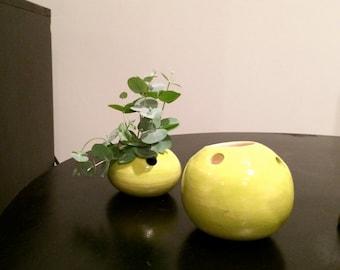 Chartreuse Mini Bud Vessels