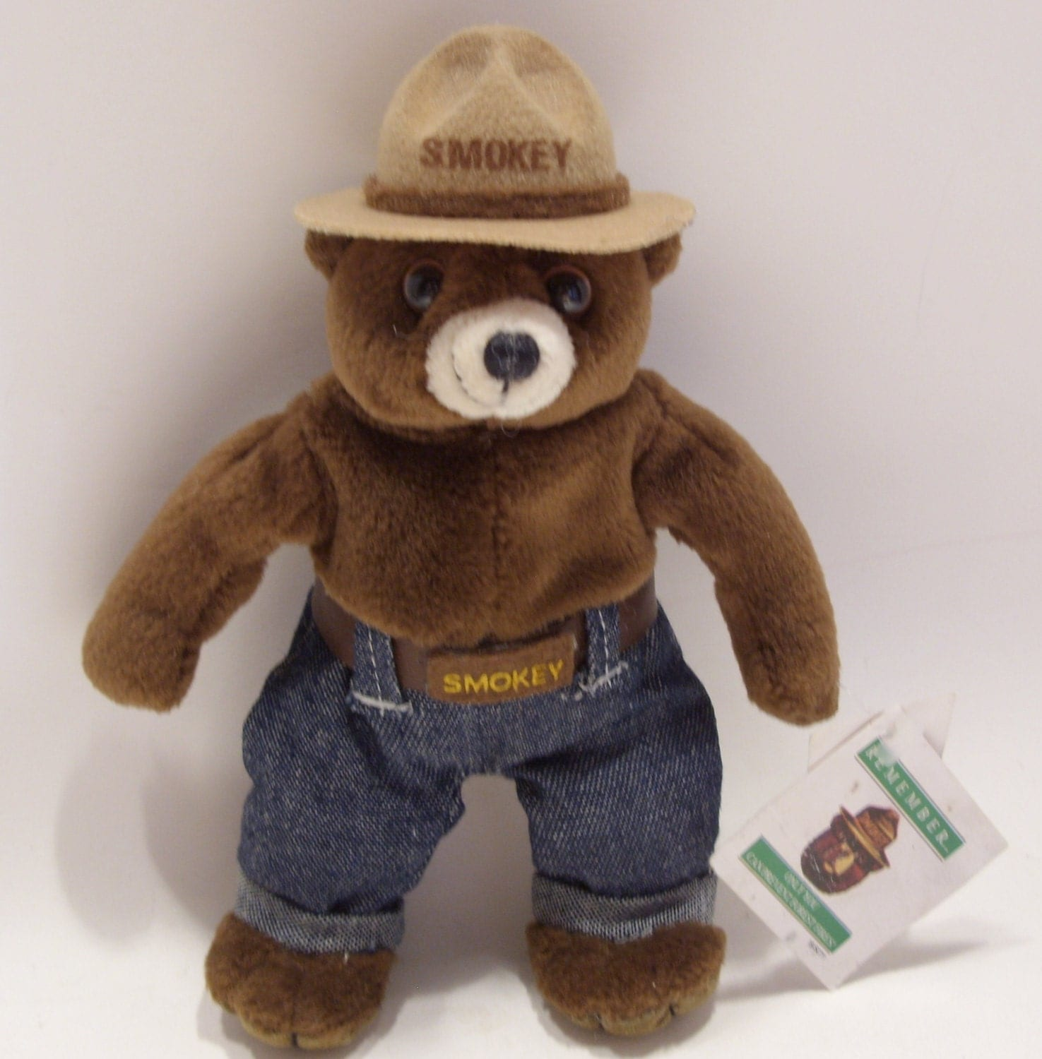 smokey the bear Feel free to give some side-eye to anyone who doesn't have a pail of water near their campfire even my little friend knows that and, if the campers don't get the hint, please step in and talk to them about it.