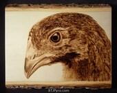 Baby Chicken - Woodburning