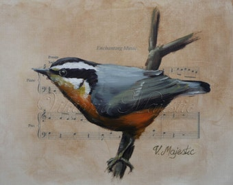 Red - Breasted Nuthatch Song Bird PRINT on Sheet Music, Fine Art, after  Original Oil Paintigng Bird Art on Etsy
