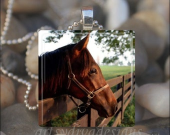 BROWN BEAUTY HORSE Equine Equestrian Brown Horse Love Glass Tile Pendant Necklace Keyring