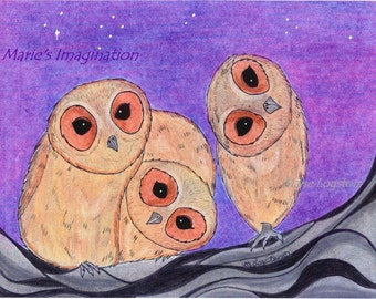 Curious Owls Greeting Cards - Note Cards. Includes White Envelopes. Blank Inside.