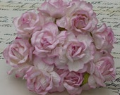 "10 2-Tone Baby Pink Large Wild Roses 40 mm (1 1/2"")"