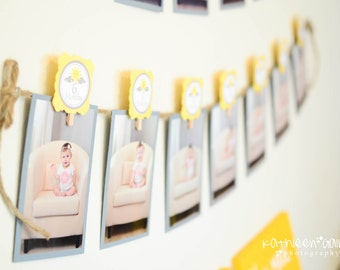 You Are My Sunshine 12 Months Photo Clips Yellow & Grey