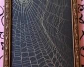 Real Spiderweb in Vintage Frame